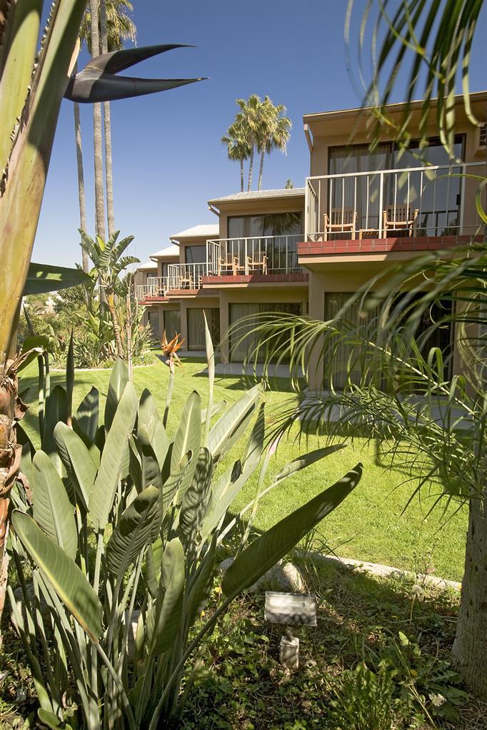 Best Western Pine Tree Motel - Chino, CA 91710