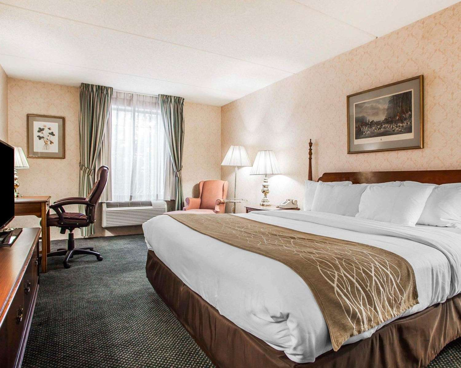 Room - Quality Inn Montgomeryville