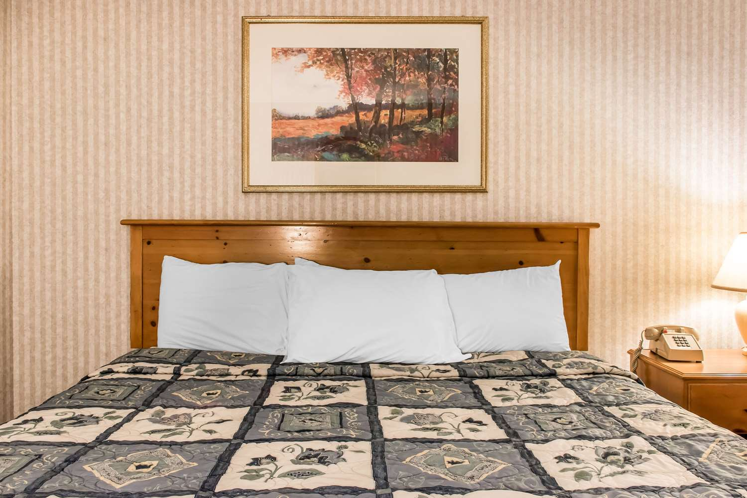 Room - Rodeway Inn Amish Country Lancaster