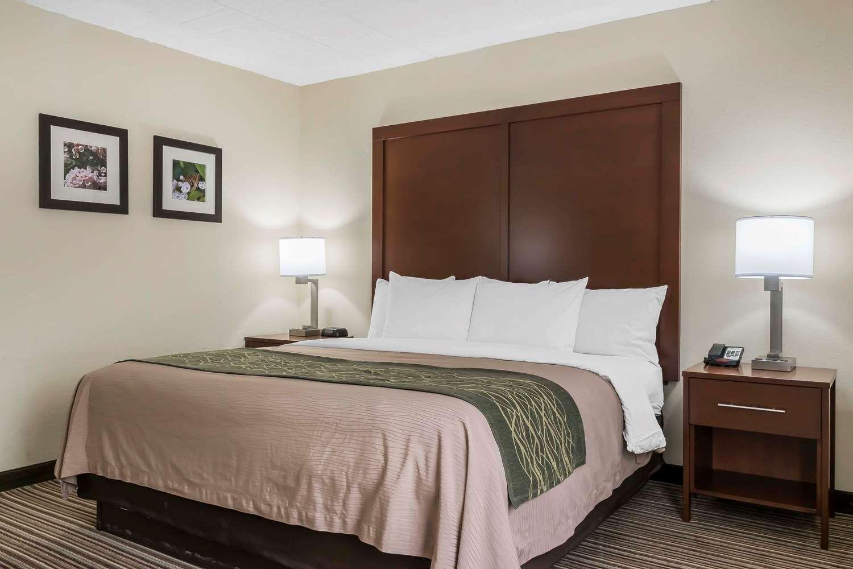 Room - Comfort Inn Pocono Mountain White Haven
