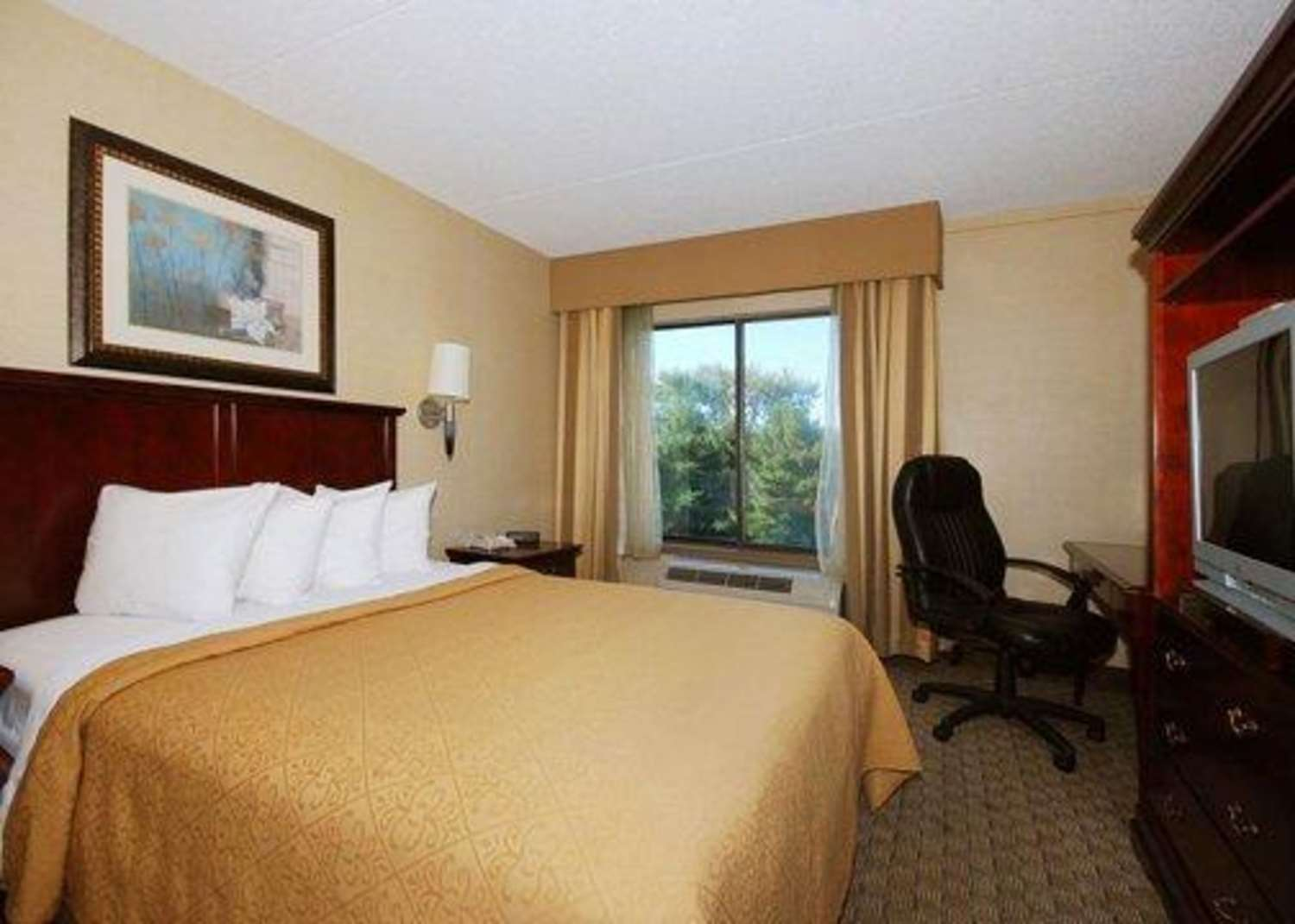 Room - Quality Inn & Suites Bensalem