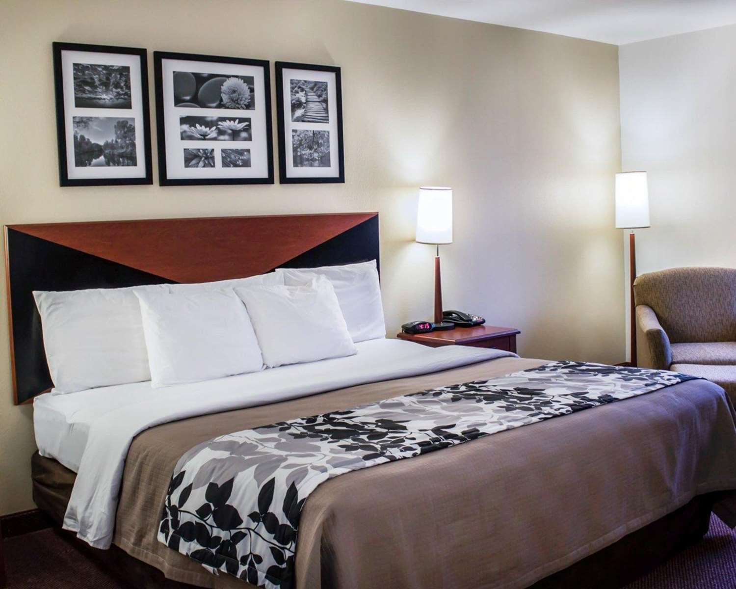 Room - Quality Inn & Suites Chambersburg