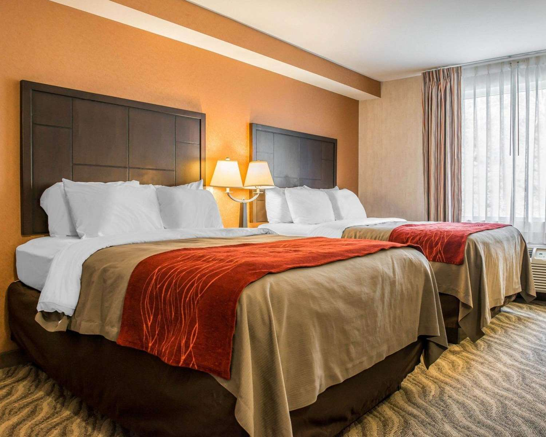 Room - Comfort Inn McKnight Road Pittsburgh