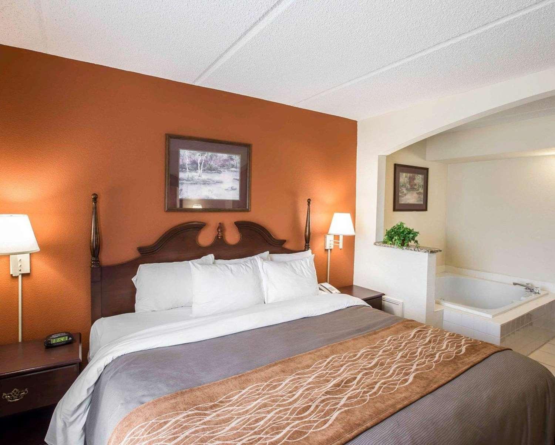 Suite - Comfort Inn & Suites Spartanburg