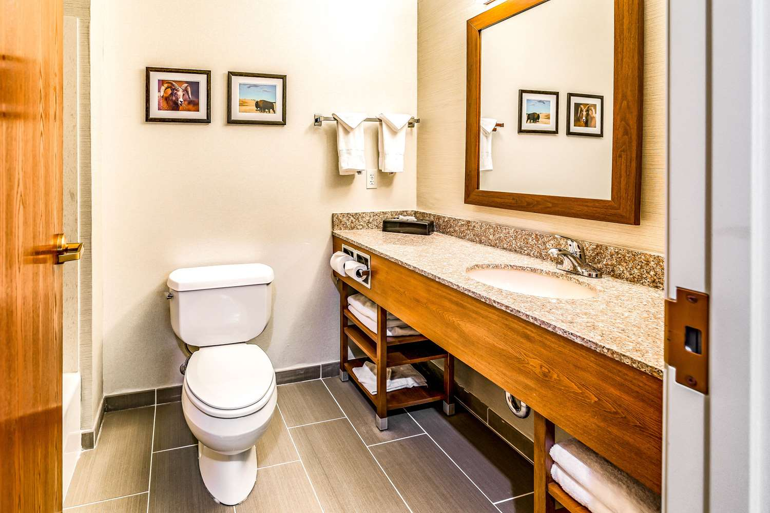 Suite - Comfort Inn & Suites Rapid City