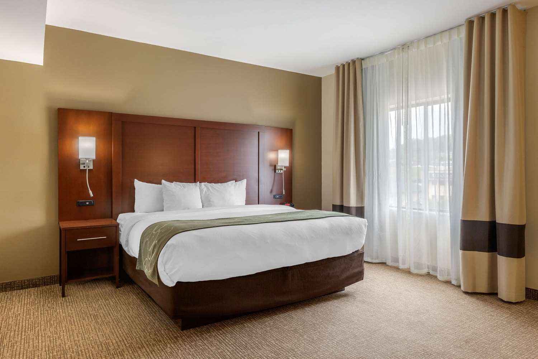 Suite - Comfort Suites Johnson City