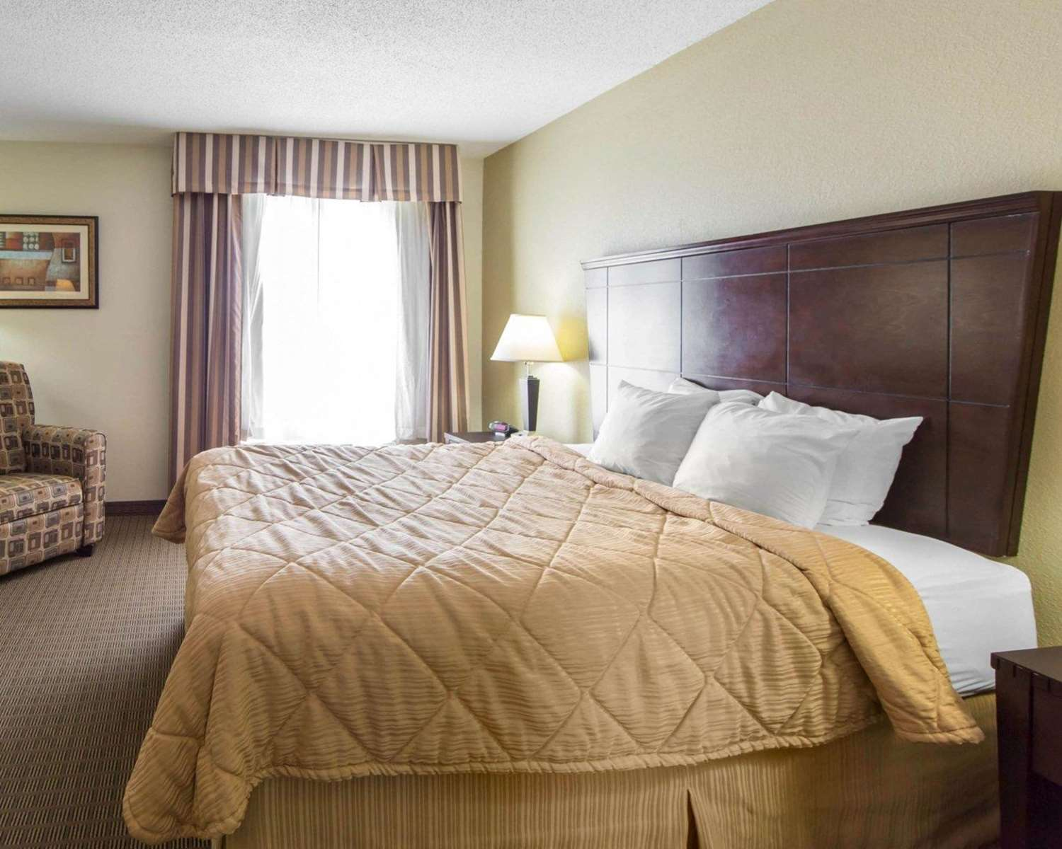 Suite - MainStay Suites Knoxville