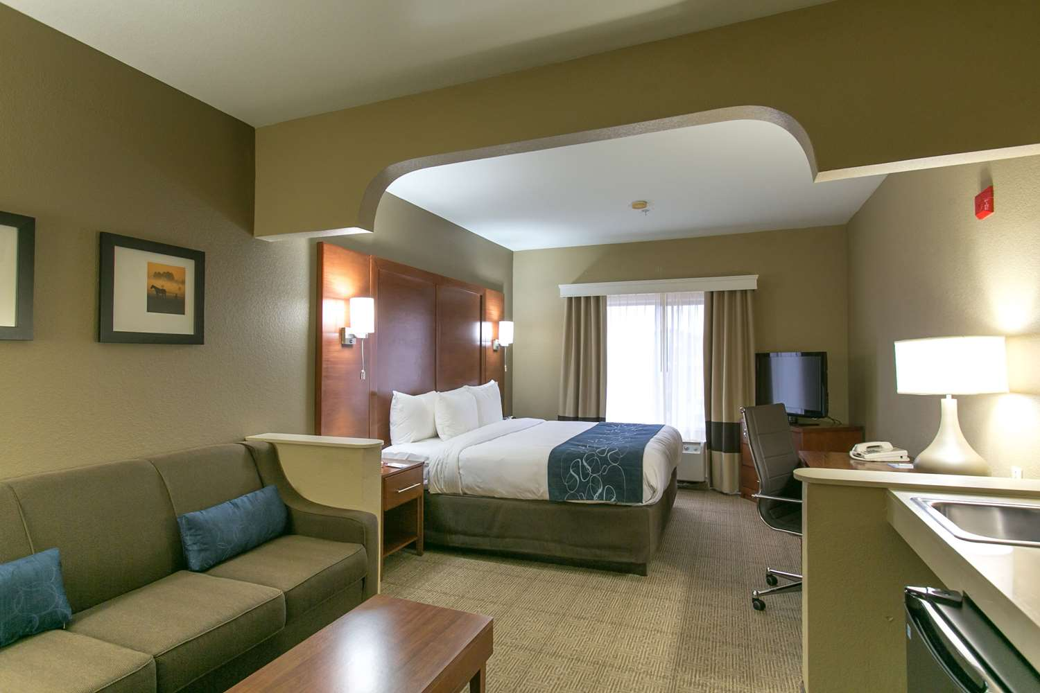 Room - Comfort Suites US 183 Austin