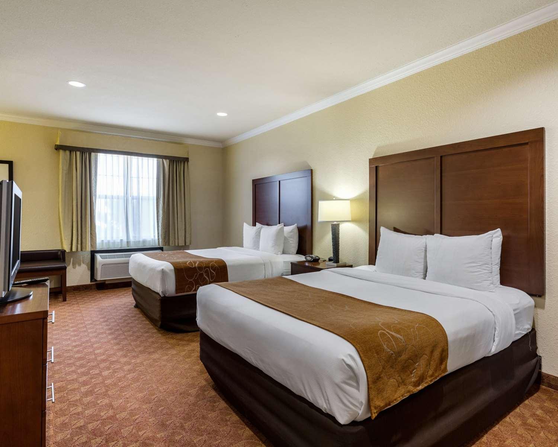 Suite - Comfort Suites Webster