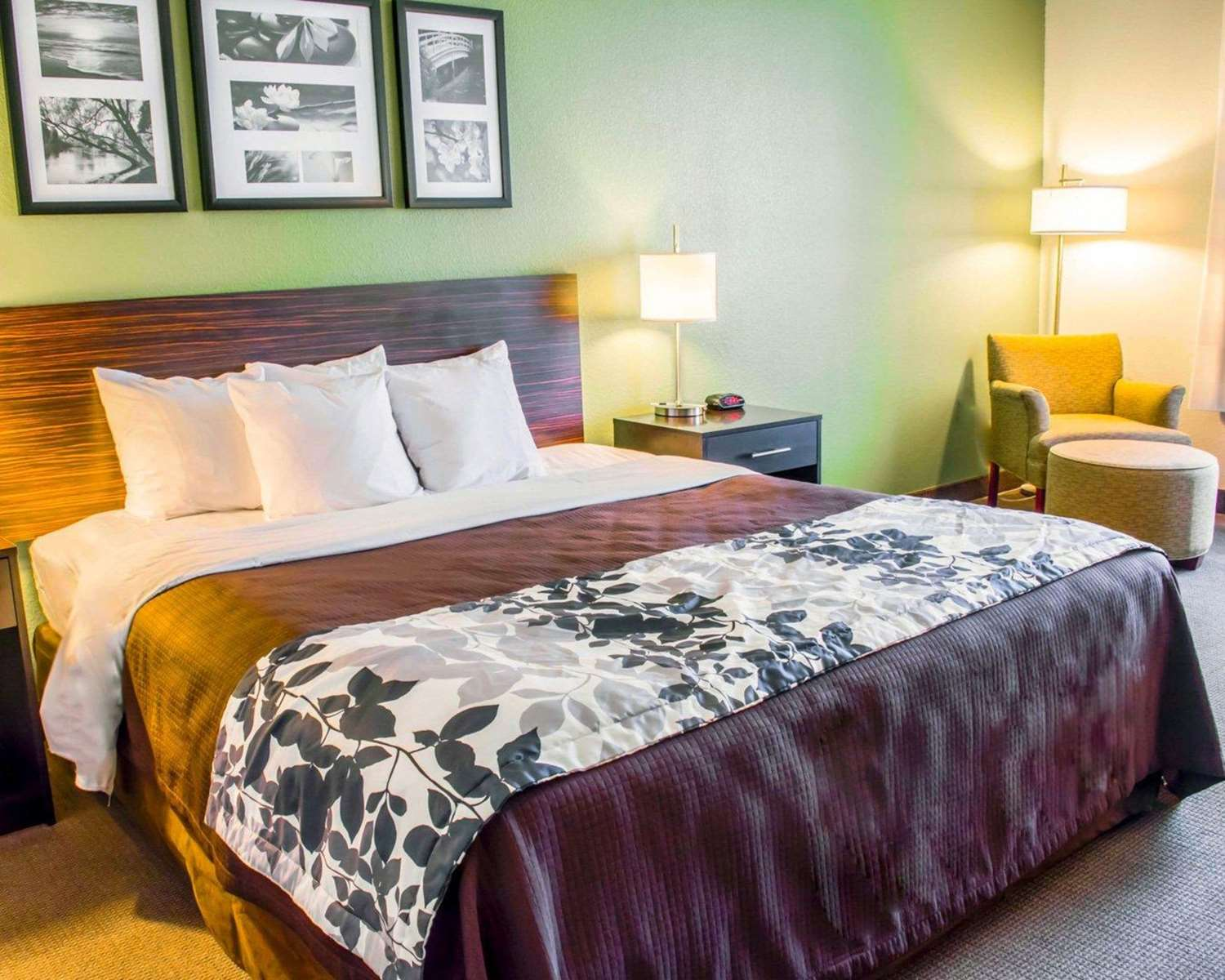 Room - Sleep Inn & Suites Lexington