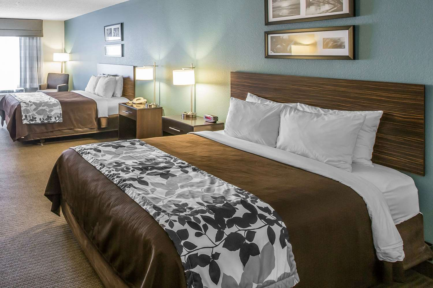 Room - Sleep Inn & Suites Clintwood