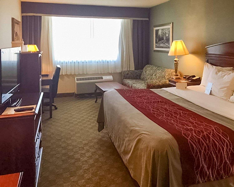 Room - Comfort Inn Springfield