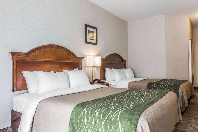 Room - Comfort Inn & Suites South Burlington