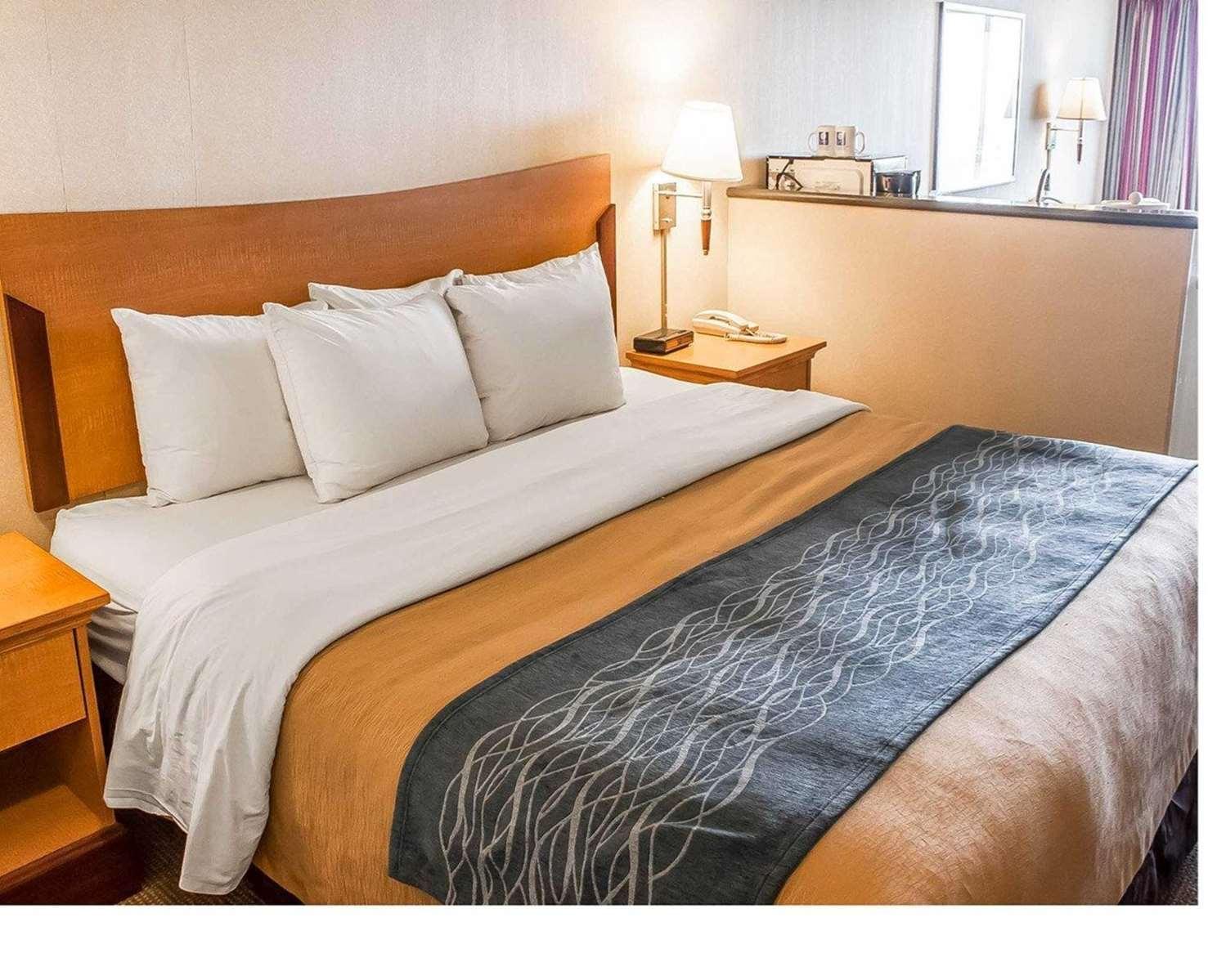 Suite - Comfort Inn & Suites Ocean Shores
