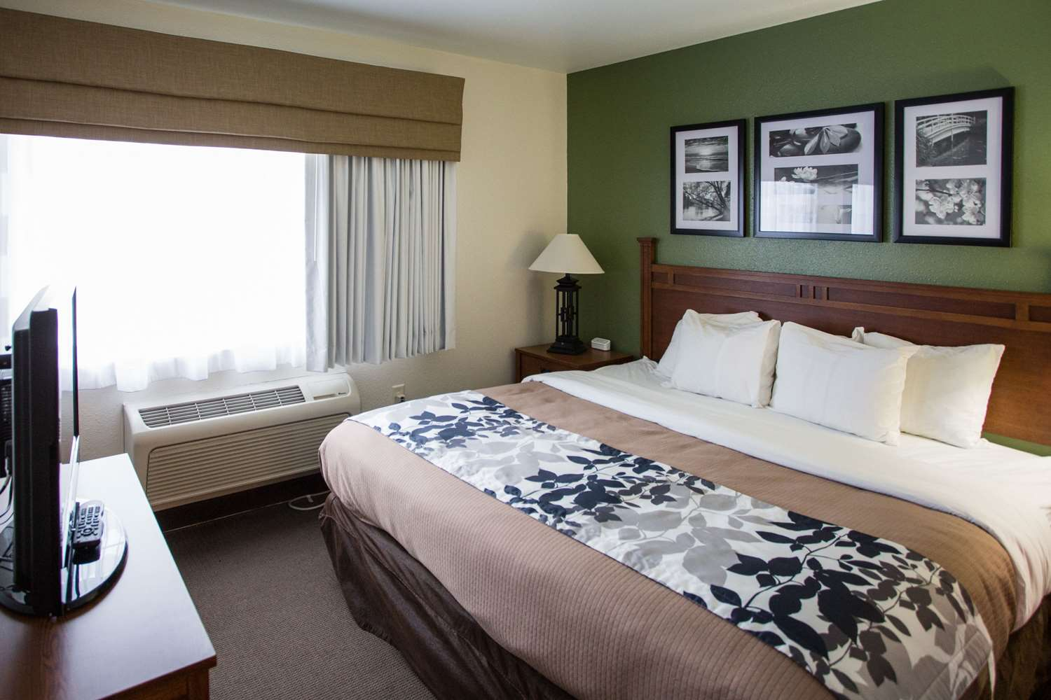 Suite - Sleep Inn & Suites Conference Center Eau Claire