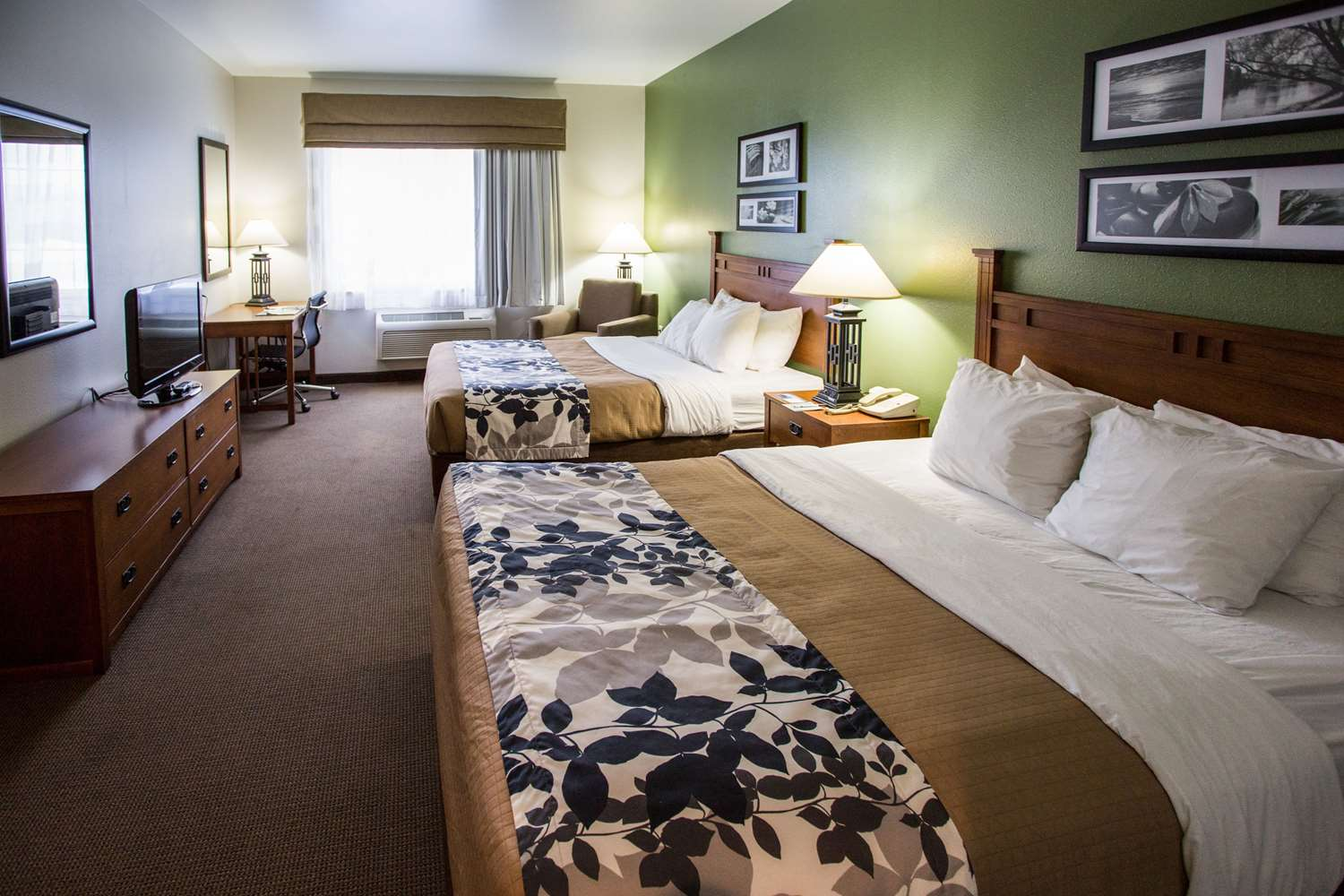 Room - Sleep Inn & Suites Conference Center Eau Claire