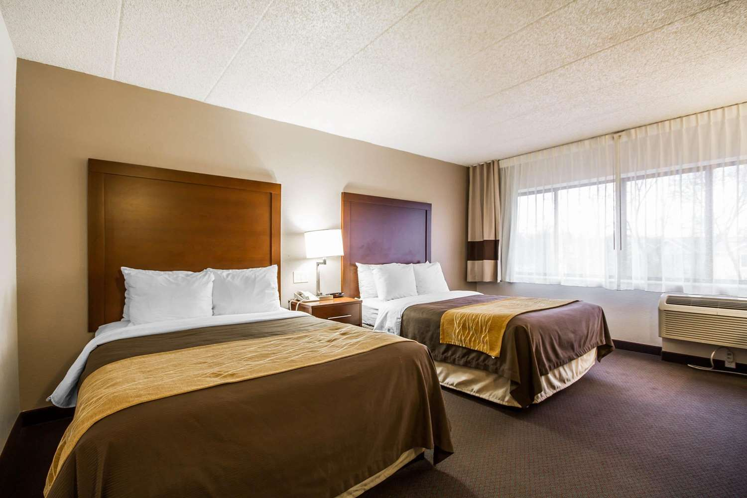 Room - Comfort Inn & Suites Madison