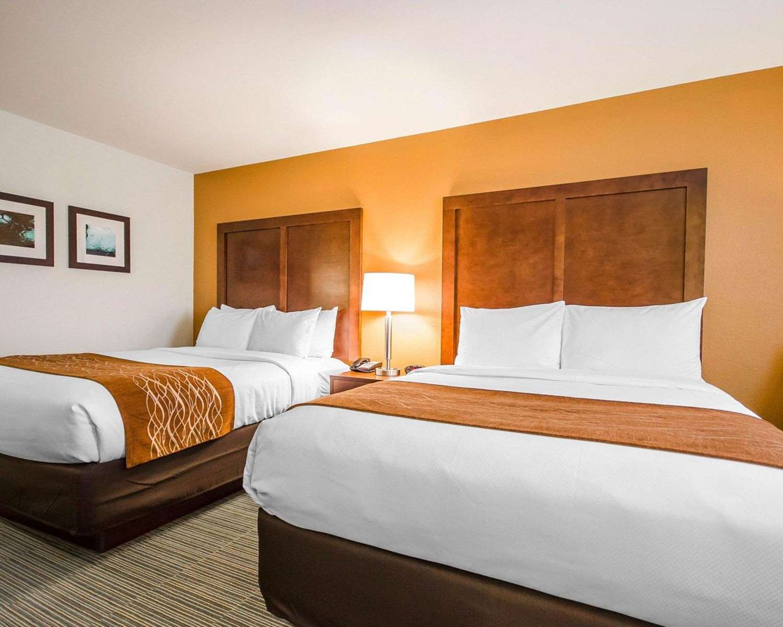 Room - Comfort Inn Ferdinand