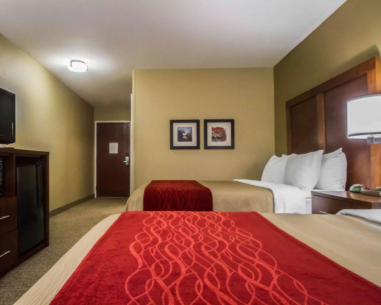 Room - Comfort Inn & Suites Morgan City