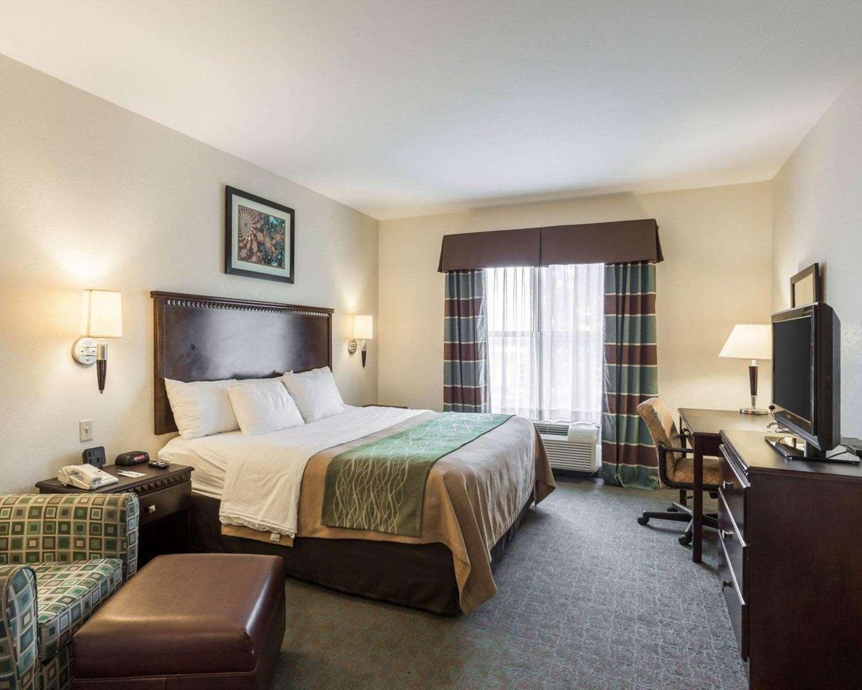 Room - Comfort Inn Donaldsonville