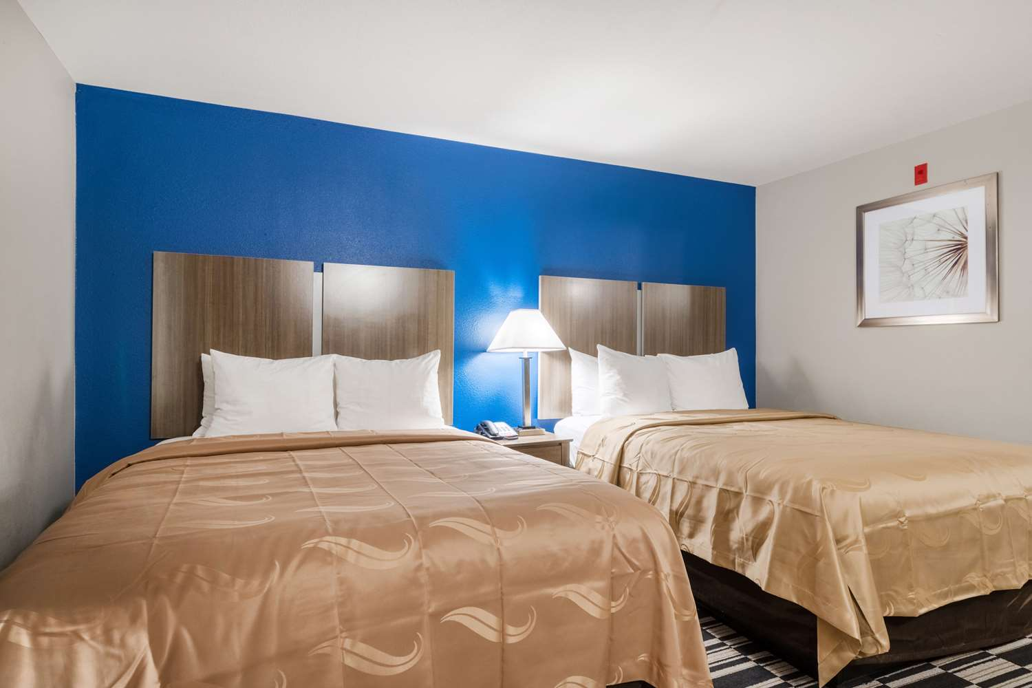Room - Quality Suites Lake Charles