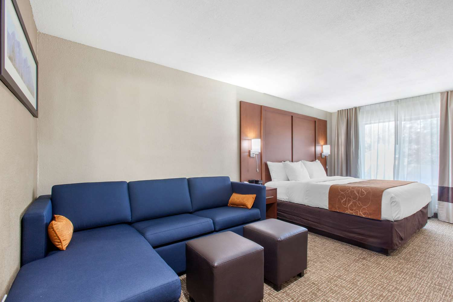 Suite - Comfort Inn & Suites Lakeside