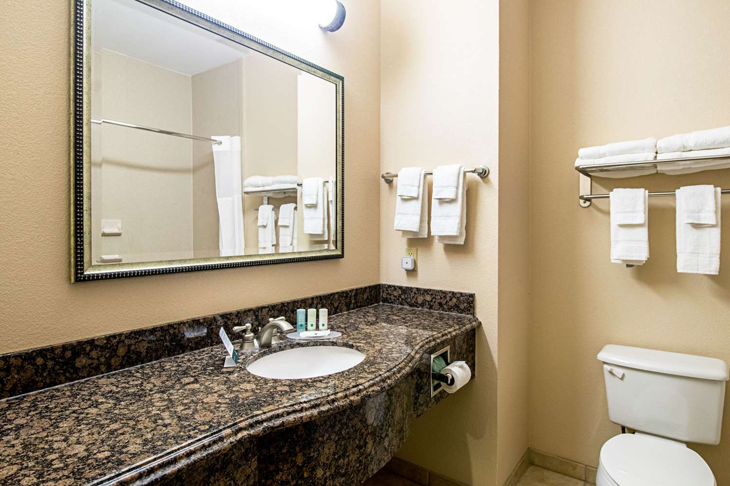 Room - Quality Inn & Suites Robstown