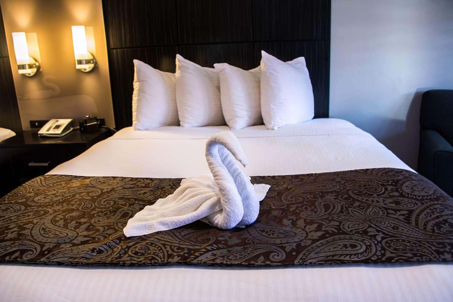 Room - SureStay Plus Hotel by Best Western Santa Clara