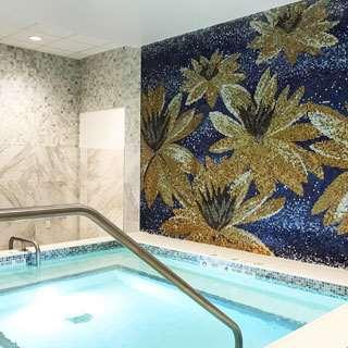 Spa - YO1 Luxury Nature Cure Resort Catskills Monticello