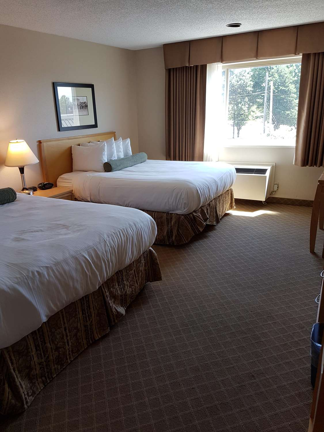 Room - SureStay Plus Hotel by Best Western Coquitlam
