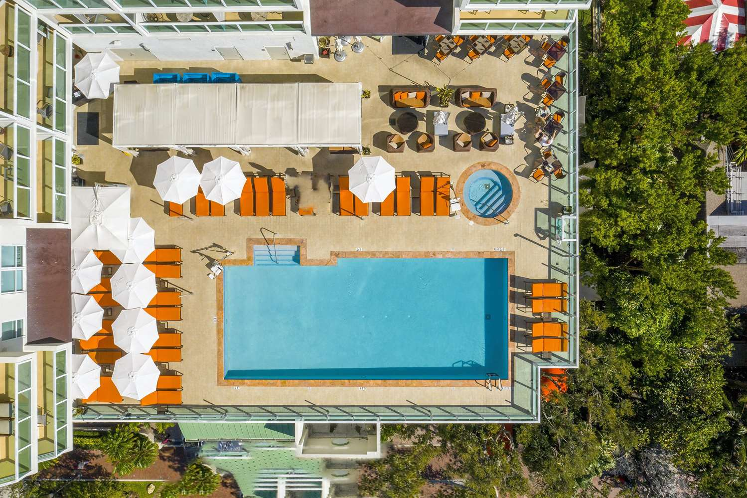 Pool - Hotel Aria Coconut Grove