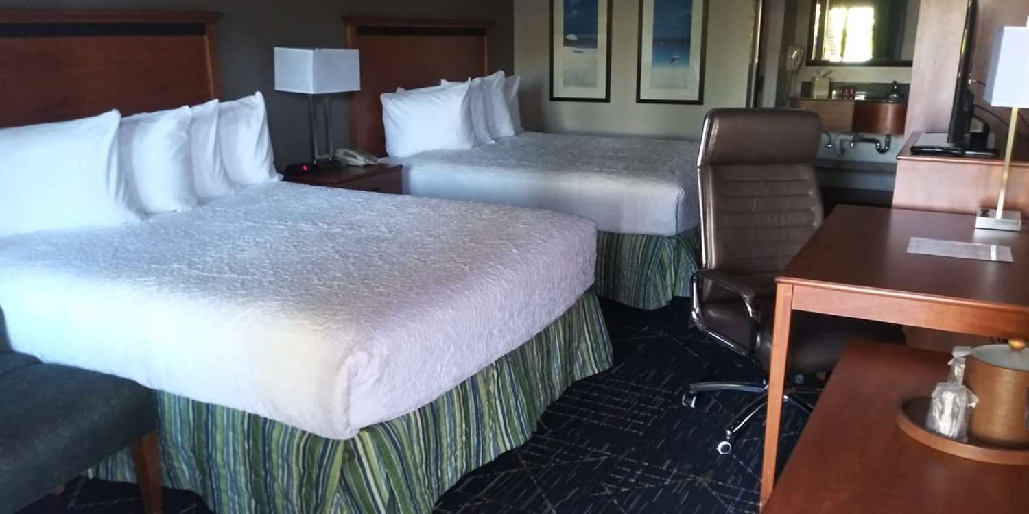 Room - SureStay Plus Hotel by Best Western Clearwater Central