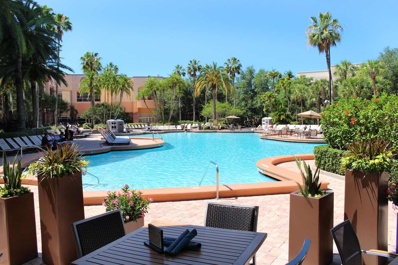 Pool - Rosen Centre Hotel Orlando