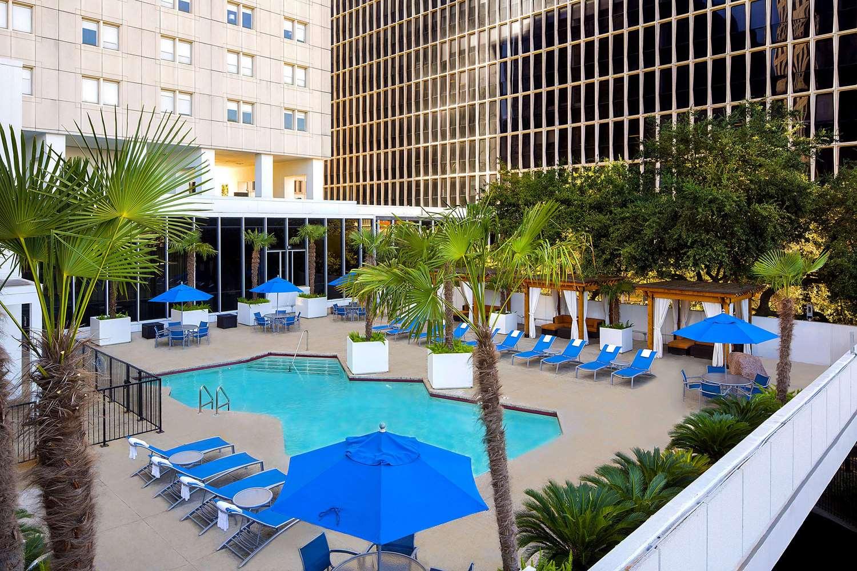 Pool - Whitehall Hotel Downtown Houston