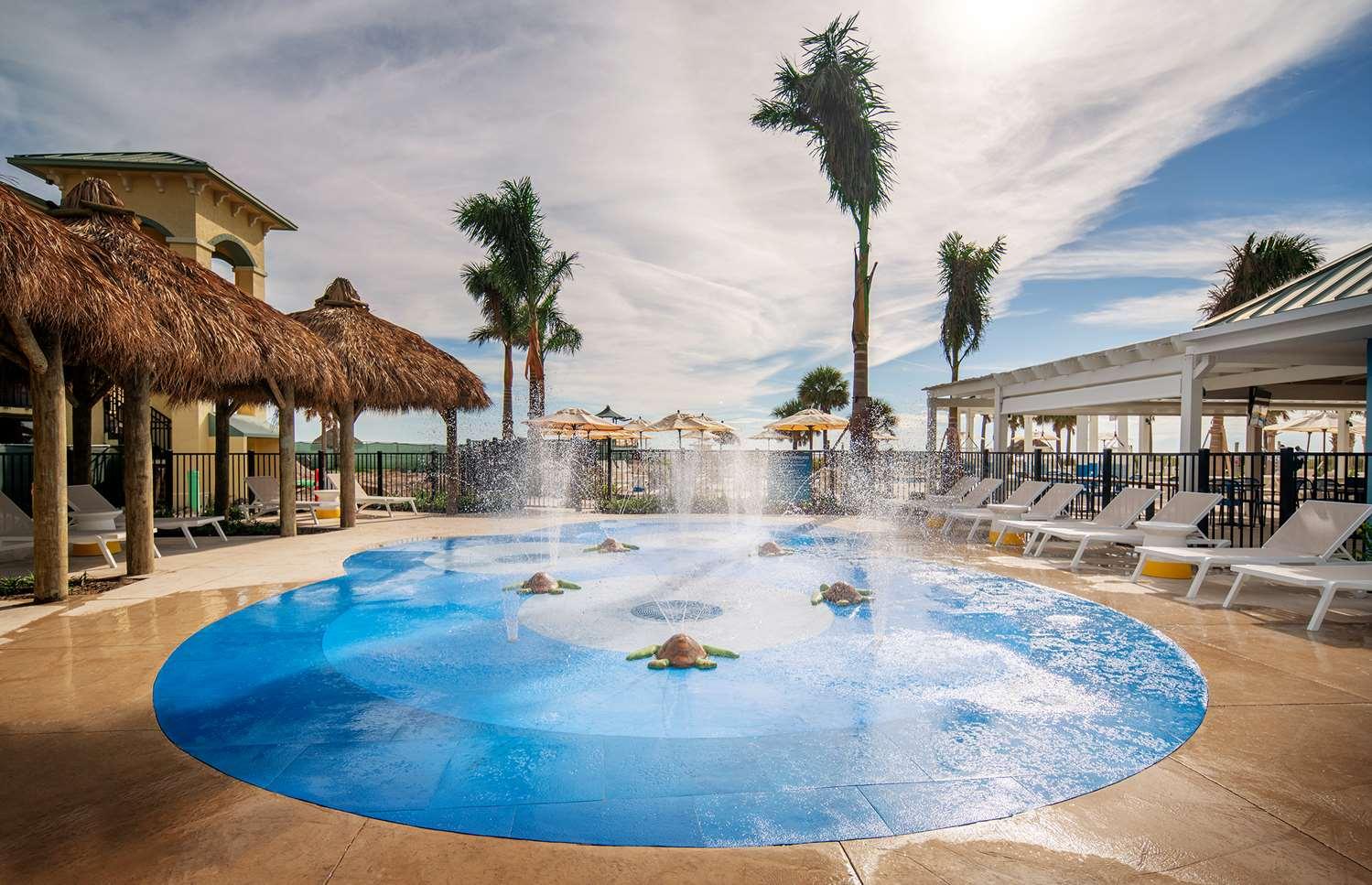 Pool - Sirata Beach Resort St Pete Beach
