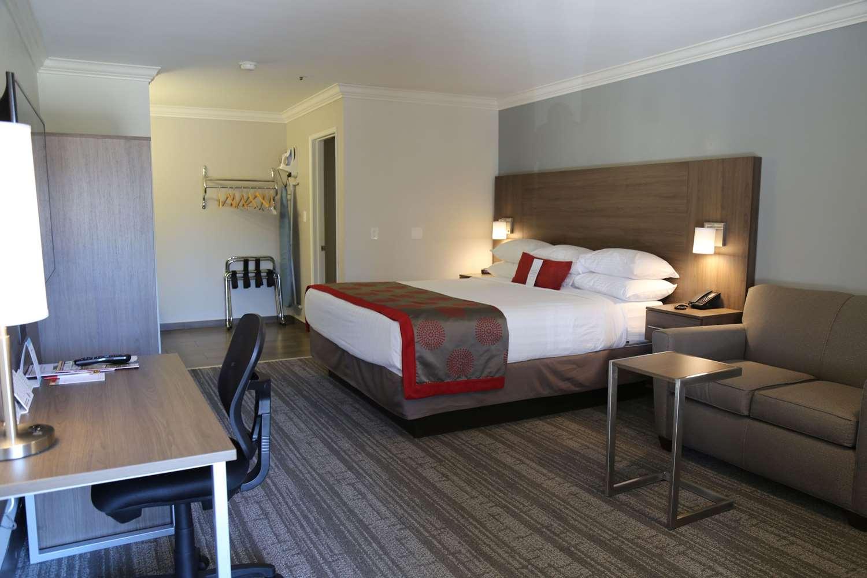 Room - Signature Inn Temecula