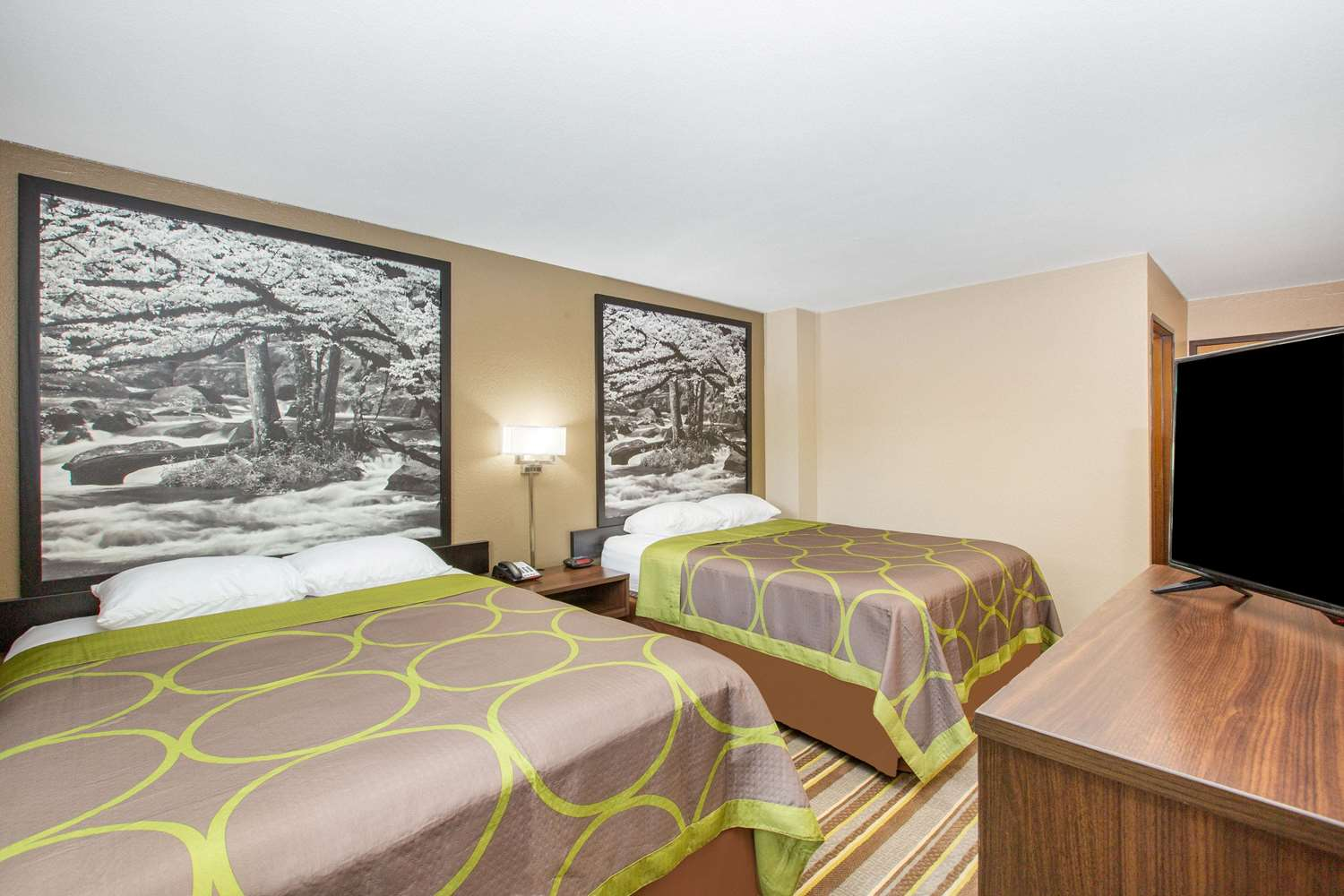 Room - Super 8 Hotel Lookout Mountain Chattanooga