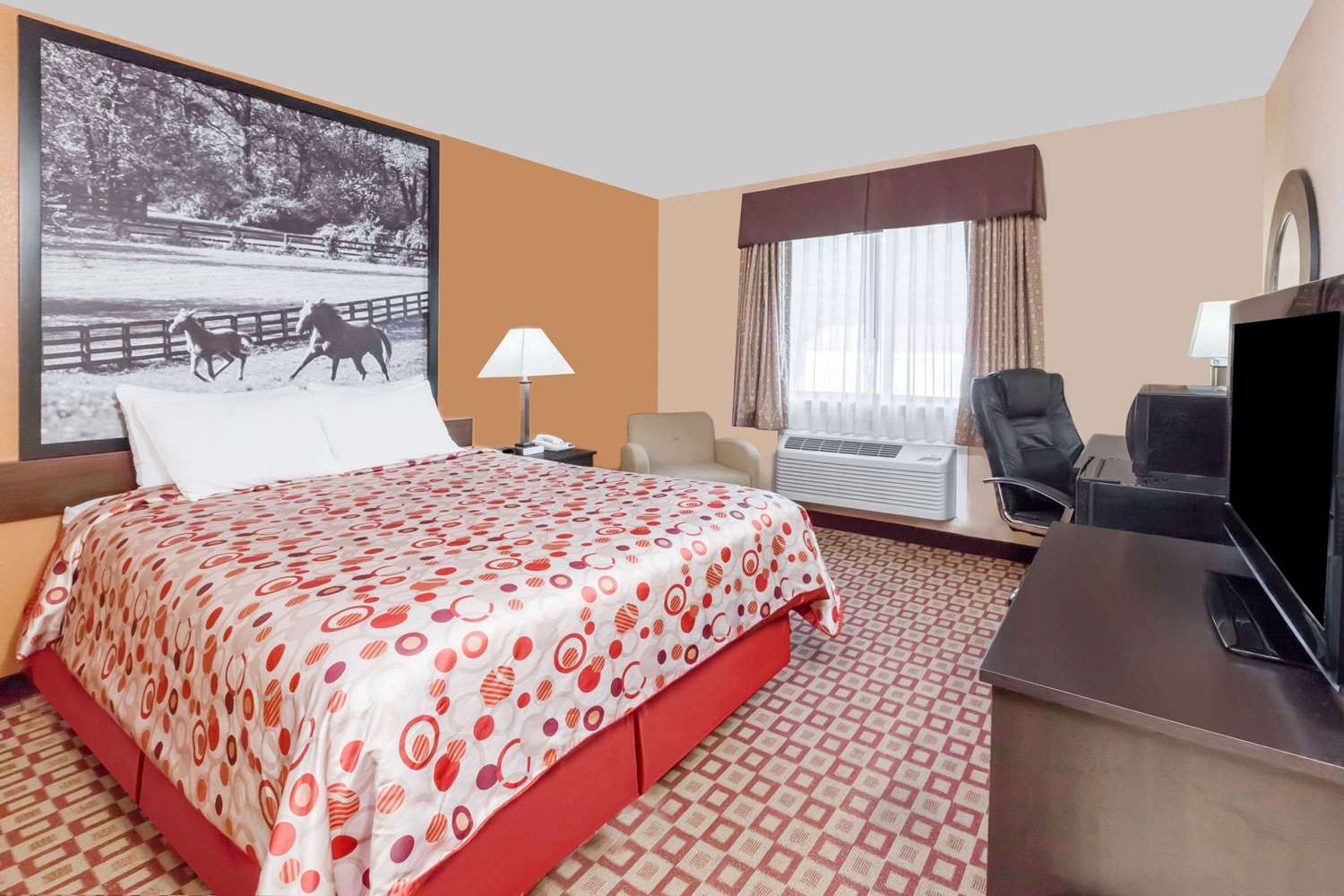 Room - Super 8 Hotel South Bowling Green