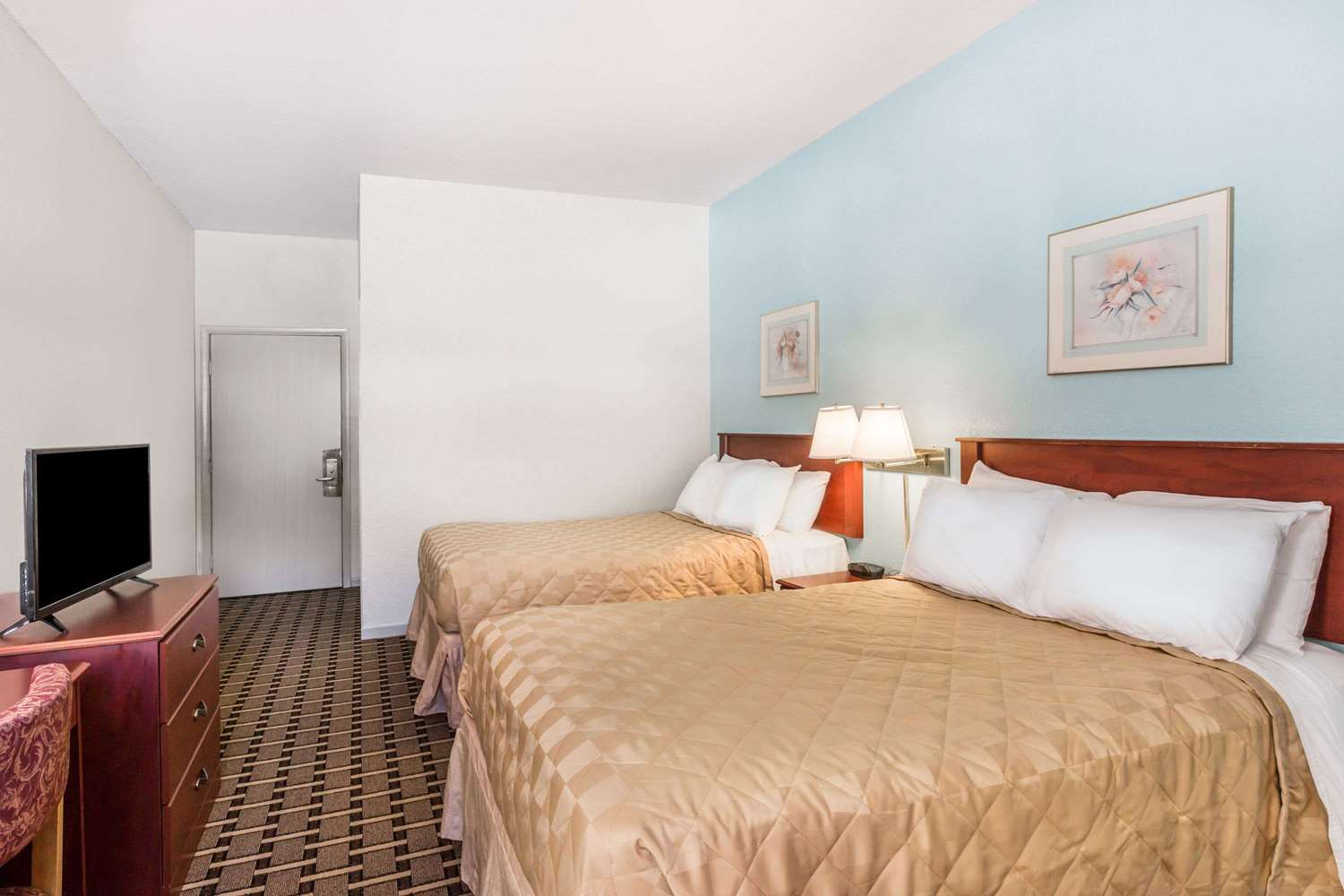 Room - Super 8 Hotel Downtown Knoxville