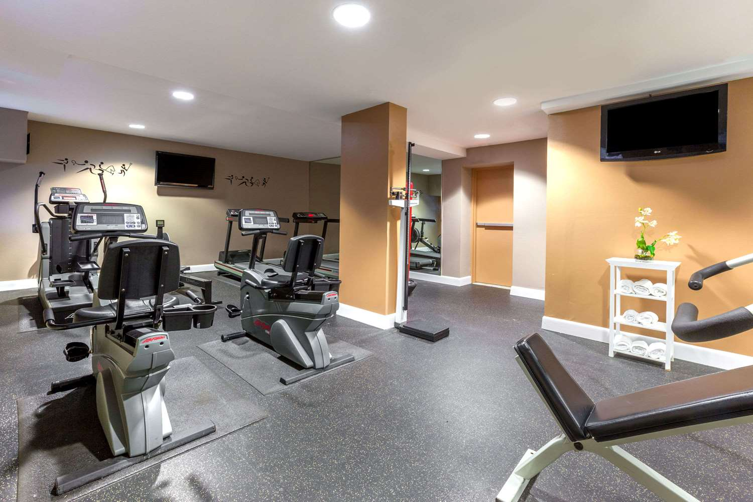 Fitness/ Exercise Room - Ramada Inn Jersey City