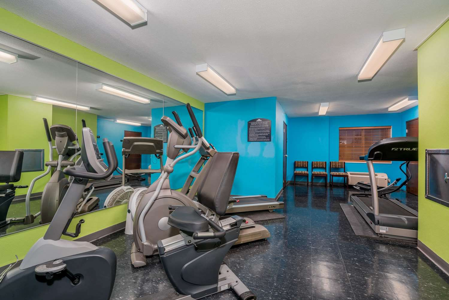 Fitness/ Exercise Room - Microtel Inn & Suites by Wyndham Rochester