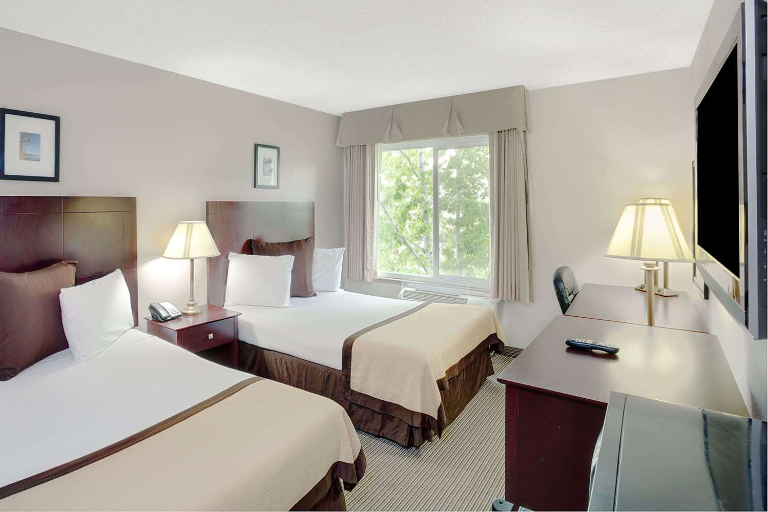 Room - Baymont Inn & Suites Airport Reno