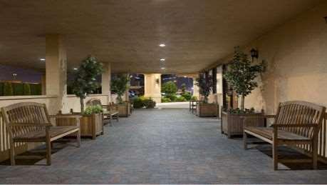 Lobby - Wyndham Garden Hotel Airport Newark