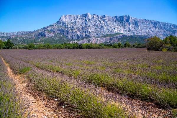 CAMPANILE AIX EN PROVENCE SUD - La Beauvalle
