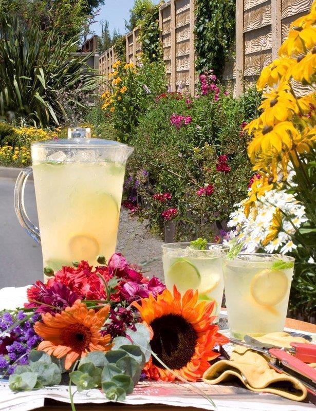 Pool - Best Western Garden Inn Santa Rosa