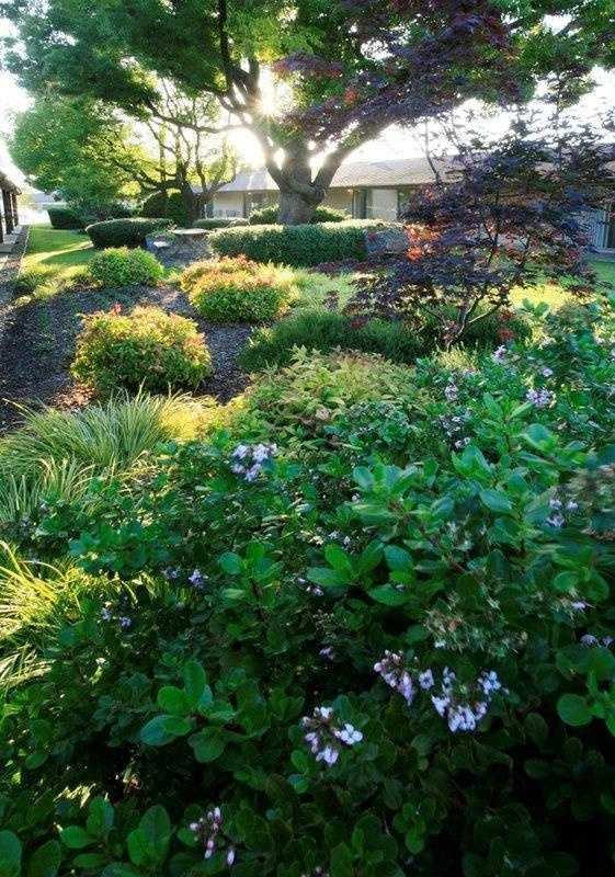 proam - Best Western Garden Inn Santa Rosa
