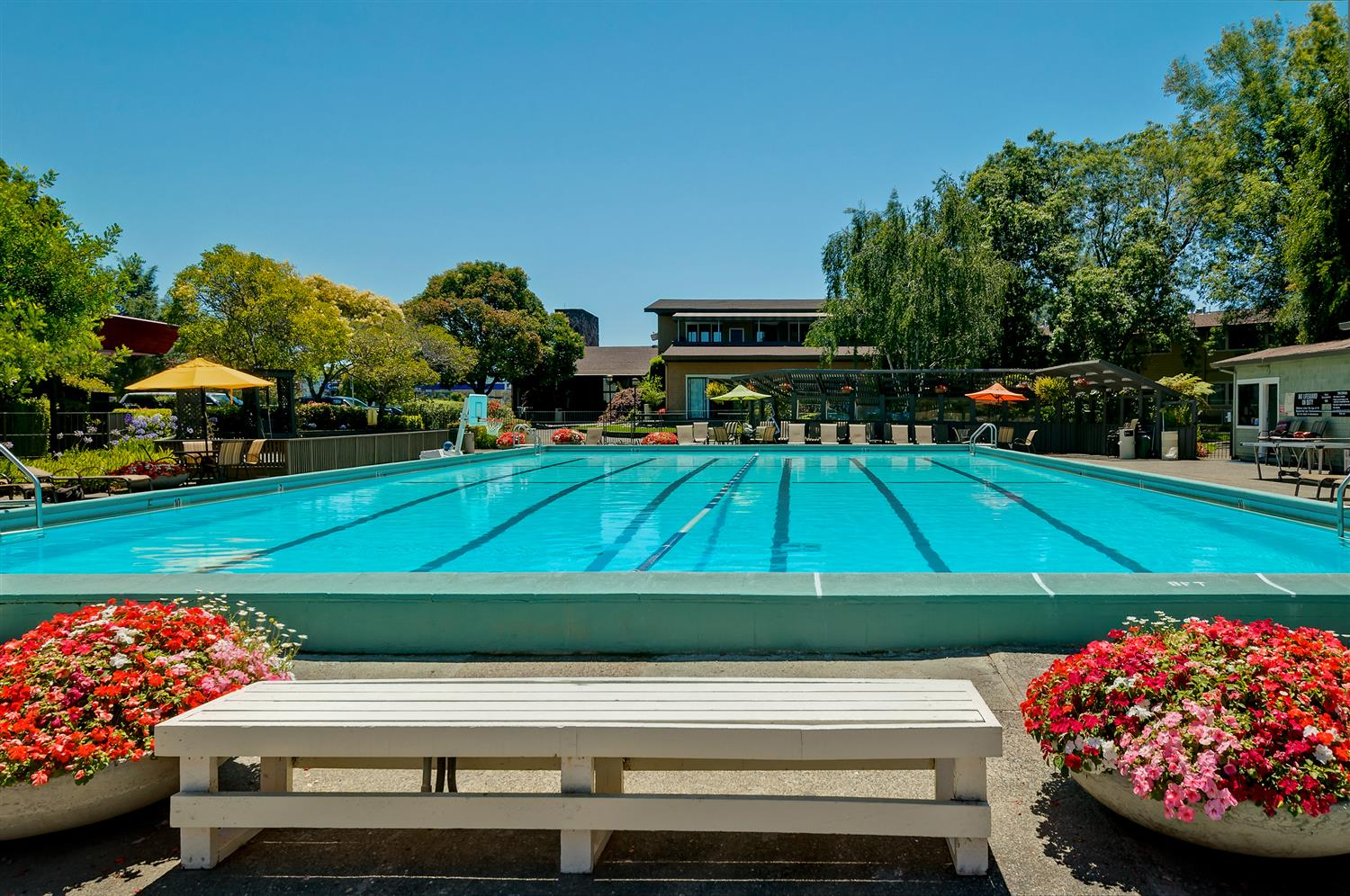 Best western corte madera inn ca see discounts - Best hotel swimming pools in california ...
