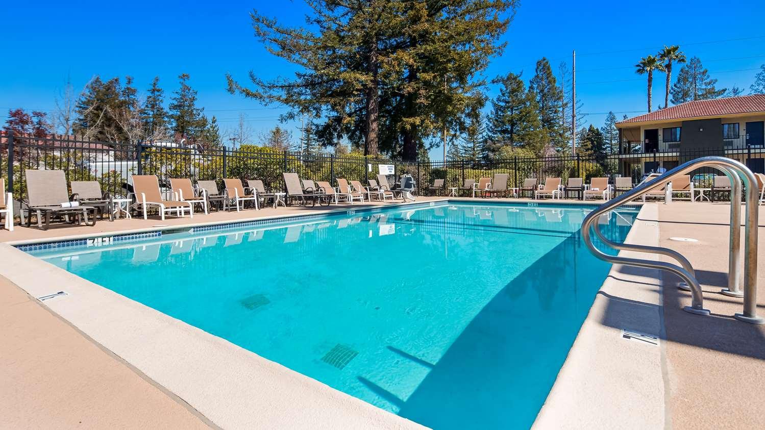 Pool - Best Western Rohnert Park Inn