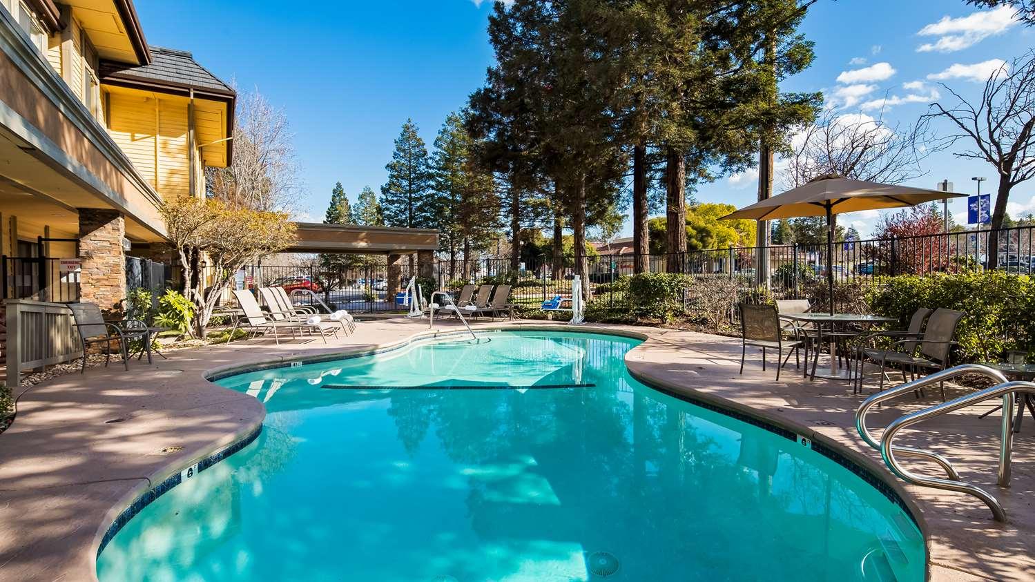 Pool - Best Western John Muir Inn Martinez