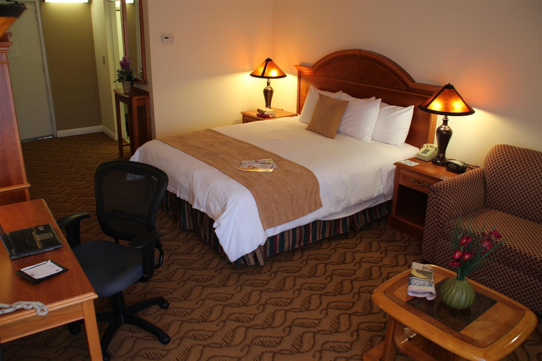 Room - Best Western Plus Thousand Oaks Inn